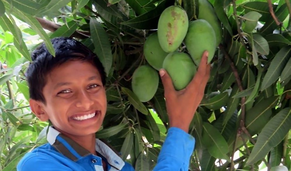 A child picks a mango in the Children of Faith Garden